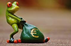 paying frog.jpg