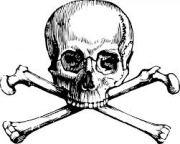 skull and crossbones.jpg